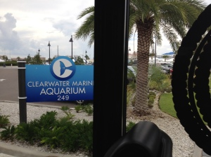 Dolphin Tale 2 Press Junket 048