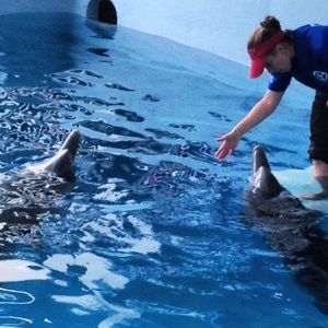 Dolphin Tale 2 Press Junket 106